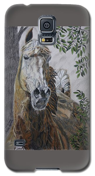 Horse Galaxy S5 Case by Melita Safran