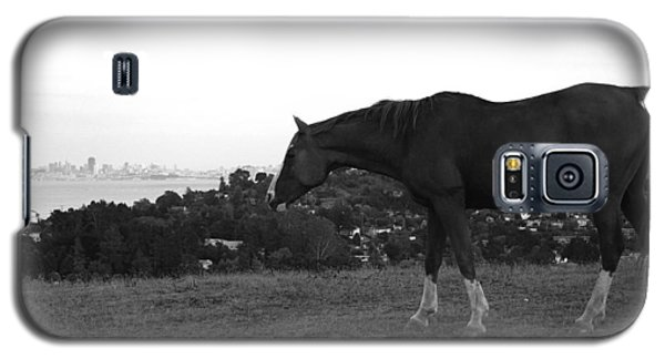 Horse On Horse Hill Galaxy S5 Case