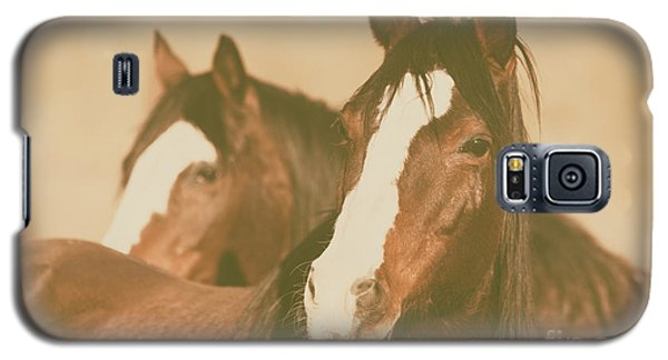 Galaxy S5 Case featuring the photograph Horse Portrait by Ana V Ramirez