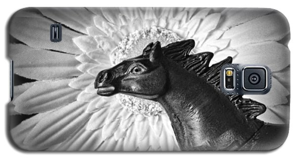 Horse Startled By A Daisy Galaxy S5 Case
