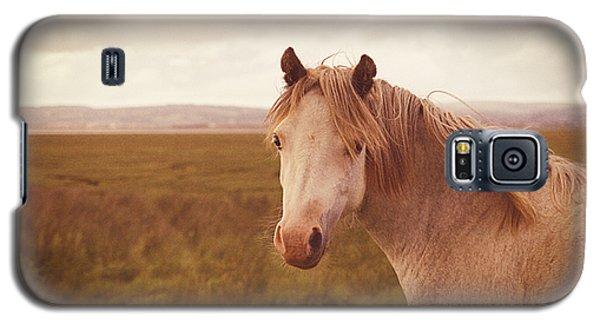 Wild Horse Galaxy S5 Case