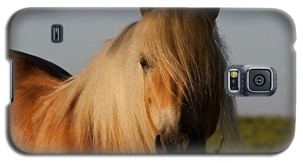 Galaxy S5 Case featuring the photograph Horse With No Name by Gary Bridger