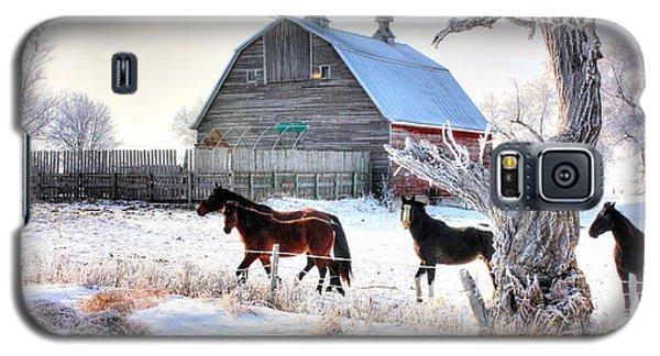 Horses And Barn Galaxy S5 Case