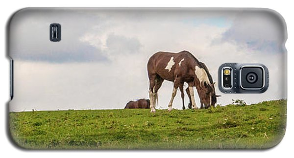 Horses And Clouds Galaxy S5 Case