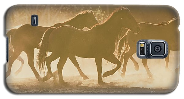 Galaxy S5 Case featuring the photograph Horses And Dust by Ana V Ramirez