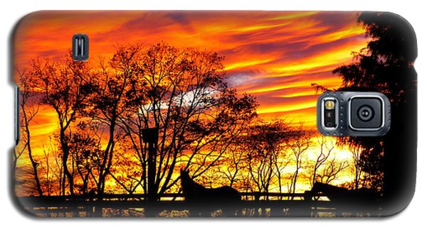 Horses And The Sky Galaxy S5 Case by Donald C Morgan
