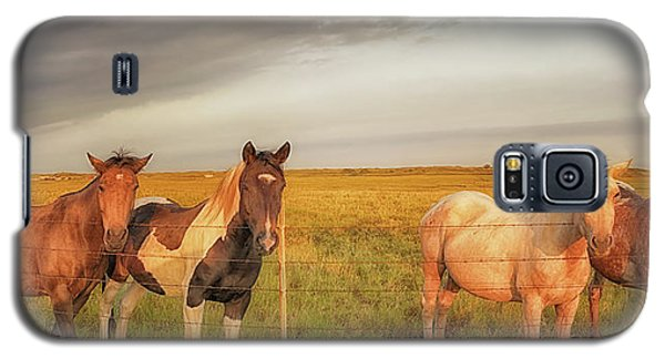 Horses At Kalae Galaxy S5 Case