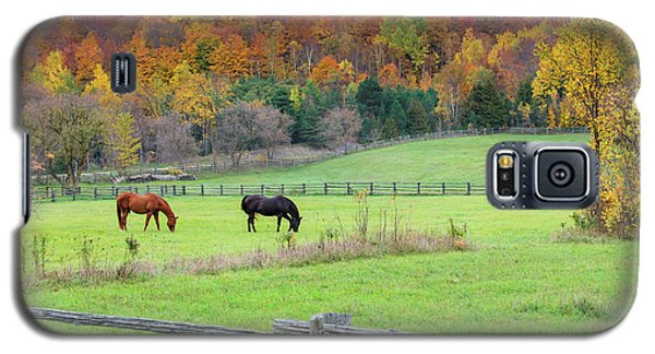 Horses Contentedly Grazing In Fall Pasture Galaxy S5 Case