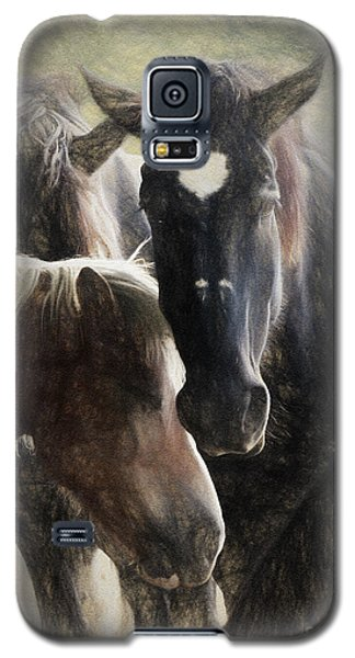 Horses Galaxy S5 Case by Elijah Knight