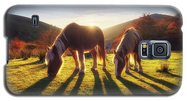 Horses In Austigarmin Galaxy S5 Case