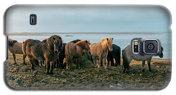 Galaxy S5 Case featuring the photograph Horses In Iceland by Dubi Roman