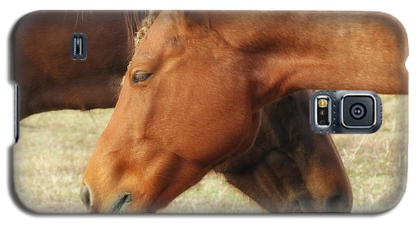 Horses In Sinc Galaxy S5 Case