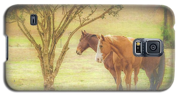 Horses In The Meadow Galaxy S5 Case