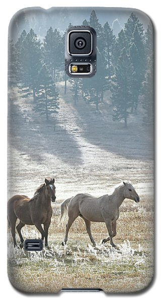 Horses In The Morning Light Galaxy S5 Case