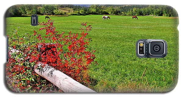 Horses In The San Juans Galaxy S5 Case by Scott Mahon