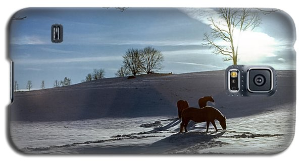 Horses In The Snow Galaxy S5 Case by Greg Reed