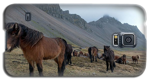 Galaxy S5 Case featuring the photograph Horses Near Vestrahorn Mountain, Iceland by Dubi Roman