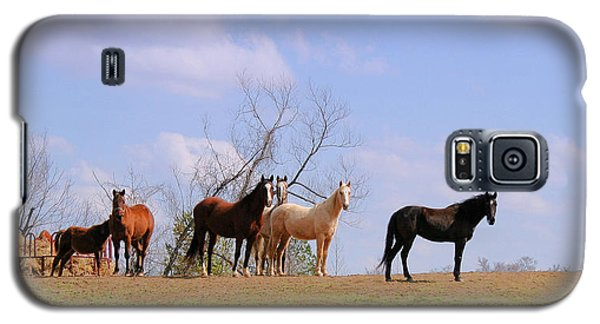 Galaxy S5 Case featuring the photograph Horses On The Hill by Bonnie Willis