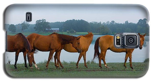 Horses On The Walk Galaxy S5 Case