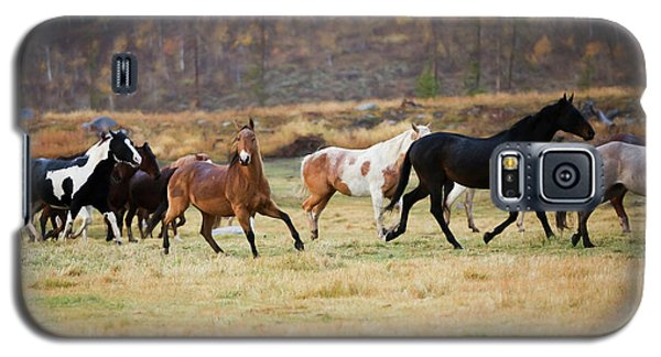 Galaxy S5 Case featuring the photograph Horses by Sharon Jones