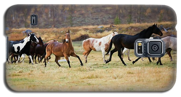 Horses Galaxy S5 Case by Sharon Jones