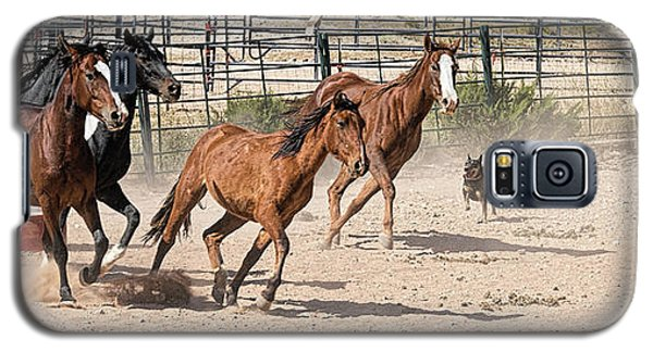 Horses Unlimited #3a Galaxy S5 Case