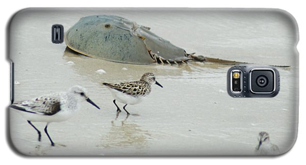 Galaxy S5 Case featuring the photograph Horseshoe Crab With Migrating Shorebirds by Richard Bryce and Family