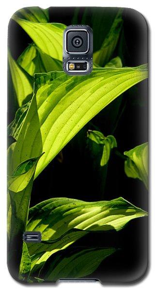 Hosta 561 Galaxy S5 Case