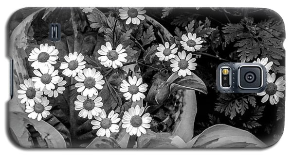 Hosta Daisies Galaxy S5 Case