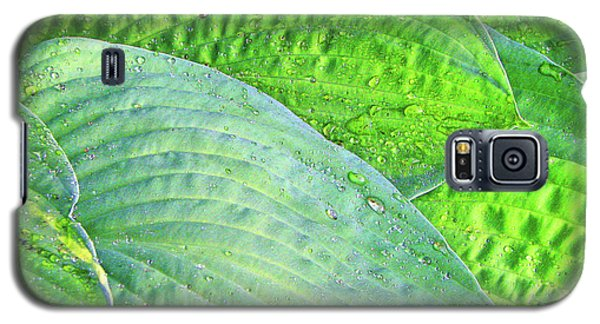 Galaxy S5 Case featuring the photograph Hosta Lavista Baby by Traci Cottingham