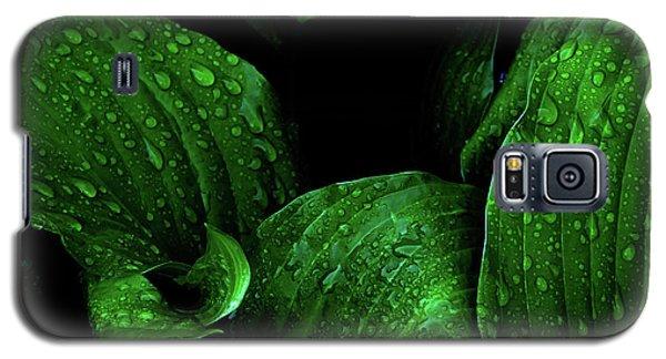 Hostas After The Rain I Galaxy S5 Case