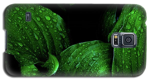 Hostas After The Rain I Galaxy S5 Case