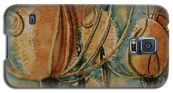 Hot Desert Sun Galaxy S5 Case by Cynthia Powell