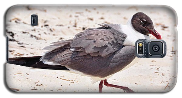 Galaxy S5 Case featuring the photograph Hot Sand by Jan Amiss Photography