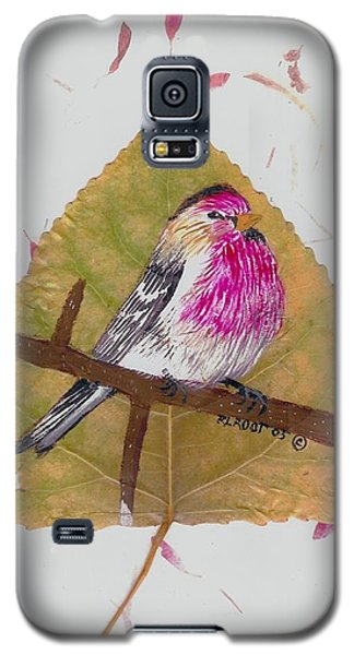 House Finch Galaxy S5 Case by Ralph Root