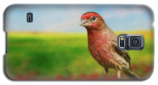 Galaxy S5 Case featuring the photograph House Finch by Steven Richardson
