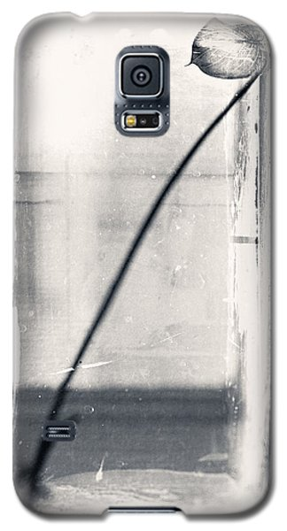 Houseplant #5147 Galaxy S5 Case by Andrey Godyaykin