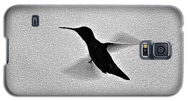 Hover Of The Hummingbird Galaxy S5 Case by Debra     Vatalaro