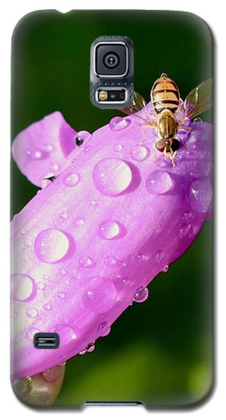 Hoverfly On Pink Flower Galaxy S5 Case