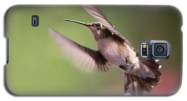 Hovering Hummer 2 Galaxy S5 Case by Kevin McCarthy
