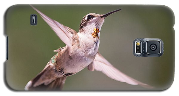 Hovering Hummer 4 Galaxy S5 Case by Kevin McCarthy