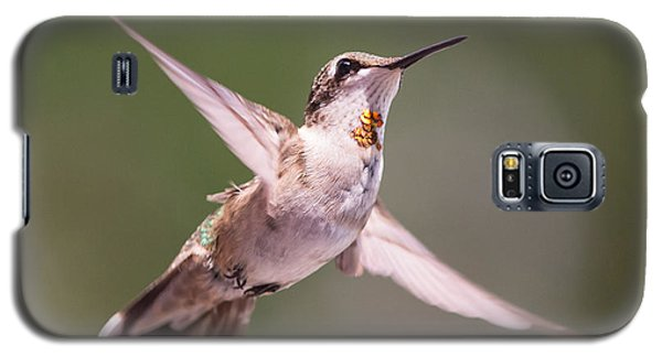Hovering Hummer 4 Galaxy S5 Case