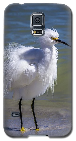 Egret Galaxy S5 Case - How Do I Look by Marvin Spates