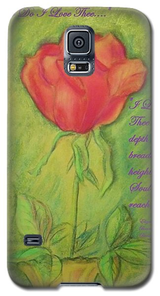 Galaxy S5 Case featuring the drawing How Do I Love Thee ? by Denise Fulmer