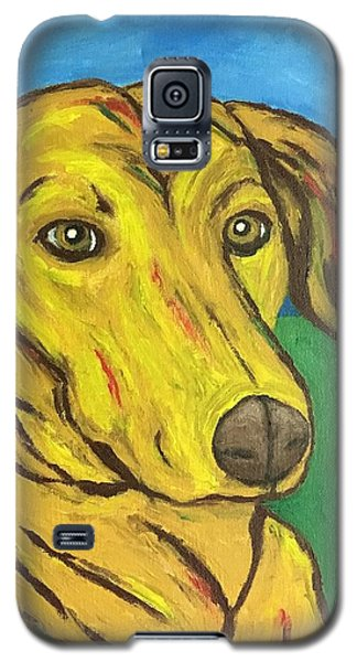Howard Galaxy S5 Case by Victoria Lakes