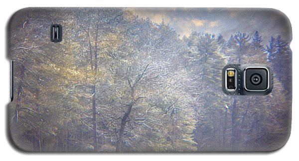 Howe State Park In Winter Galaxy S5 Case