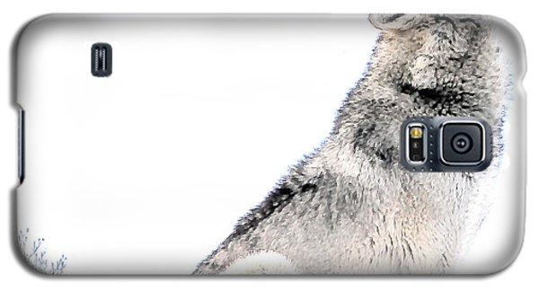 Galaxy S5 Case featuring the photograph Howling Wolf 1 by Ericamaxine Price