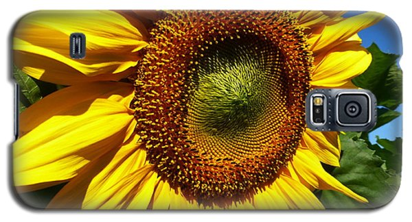Huge Bright Yellow Sunflower Galaxy S5 Case by Tina M Wenger