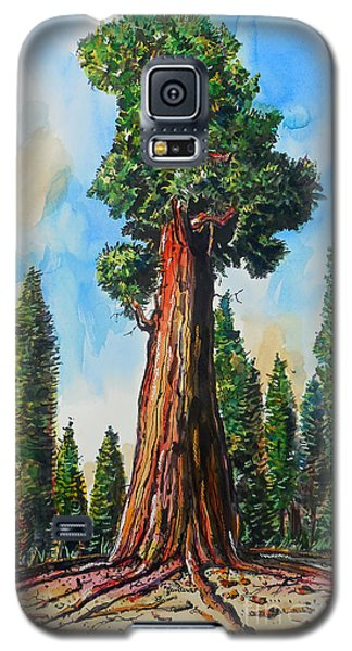 Huge Redwood Tree Galaxy S5 Case by Terry Banderas