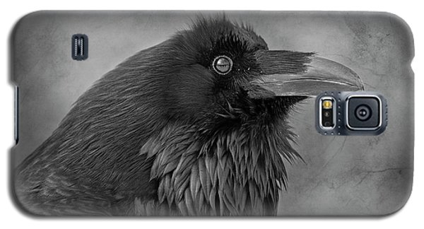 Galaxy S5 Case featuring the photograph Huginn... by Nina Stavlund
